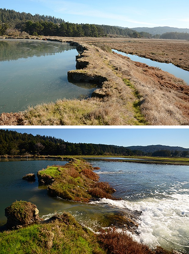 The dike at Fields Landing before and after a breach during a king tide in 2012. - PHOTOS BY ALDARON LAIRD