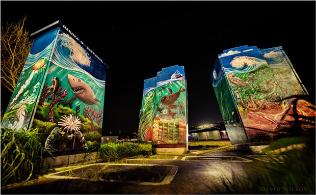 Three electrical utility boxes form a canvas for Dakota Daetwiler's undersea triptych mural featuring local marine life. Find it next to the Pacific Outfitters parking lot at the corner of 5th and Myrtle in Eureka, California. Photographed January 16, 2020. - DAVID WILSON