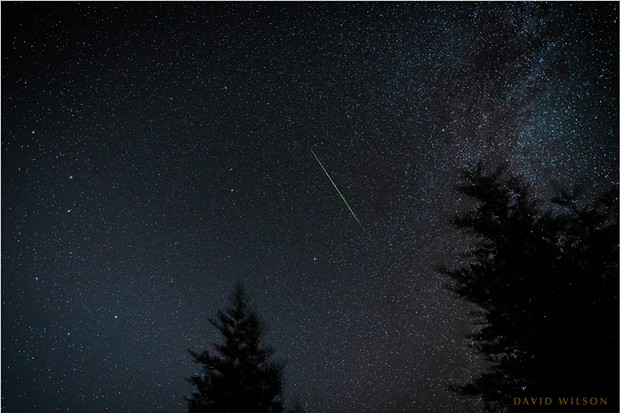 Still from a time-lapse sequence of the Perseid meteors from Fickle Hill Road on Aug. 11. - PHOTO BY DAVID WILSON