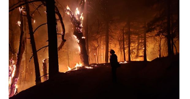 Firefighter near Ruth Lake on the Hopkins Fire, in the August Complex, the largest fire in California History. It has burned more than 726,000 acres. - TOM B. STOKESBERRY III