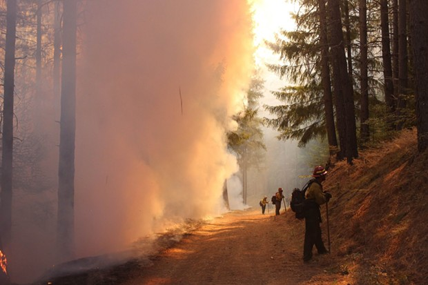 Firefighters hold the line during a burning operation on the northwest flank of the August Complex North Zone on Sept. 26, 2020. These firefighters are positioned with the job of looking into the unburned forest while watching for spot fires created by embers floating across the control line in the wind. This way they can quickly respond to these spotfires to contain them. - PHOTO CREDIT: MIKE MCMILLAN/USFS.
