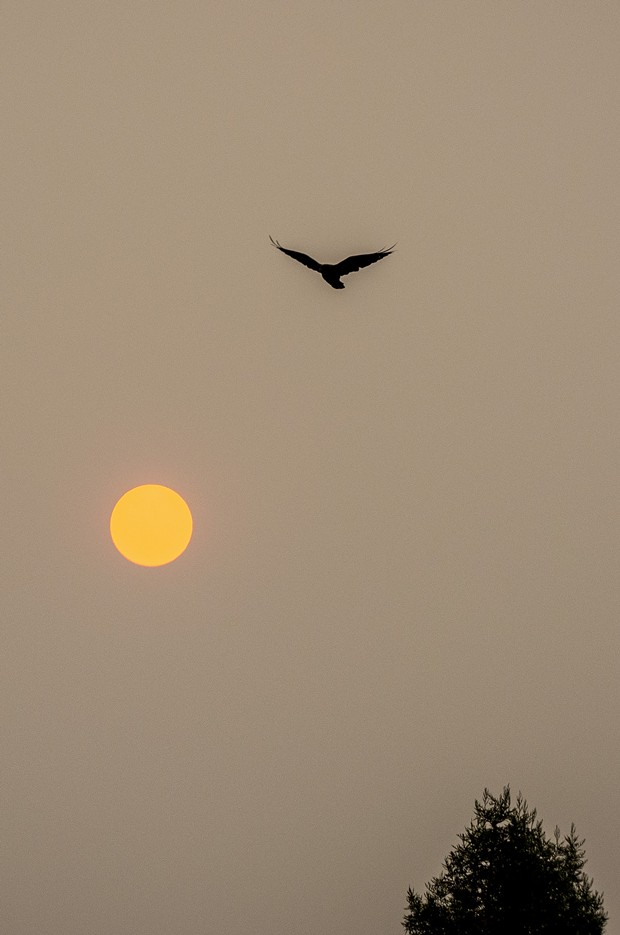 September – We awoke to a red sky and sun from smoke from nearby wildfires. - PHOTO BY MARK LARSON