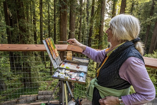 Artist Cretha Wilson, of Ferndale, found a shady spot on one of the redwood tree platforms and quickly began her painting. - PHOTO BY MARK LARSON