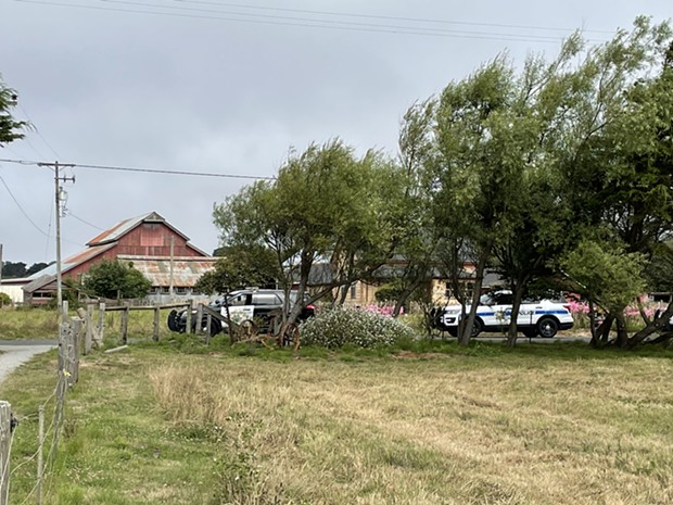 Scene of the shooting in the Arcata Bottoms. - THAD GREENSON