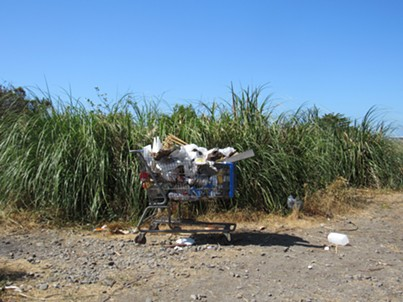 A shopping cart sits near the Devil's Playground behind the Bayshore Mall. - LINDA STANSBERRY