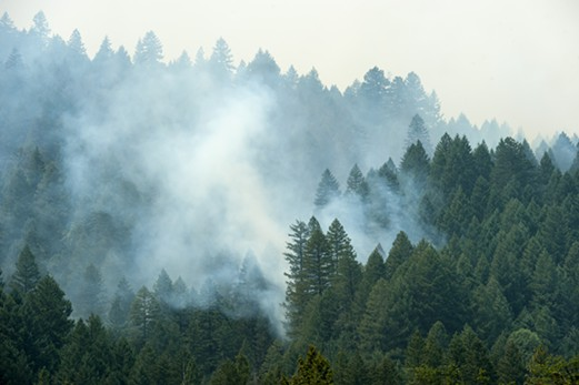 Smoke from the Mad River Fire. - MARK MCKENNA
