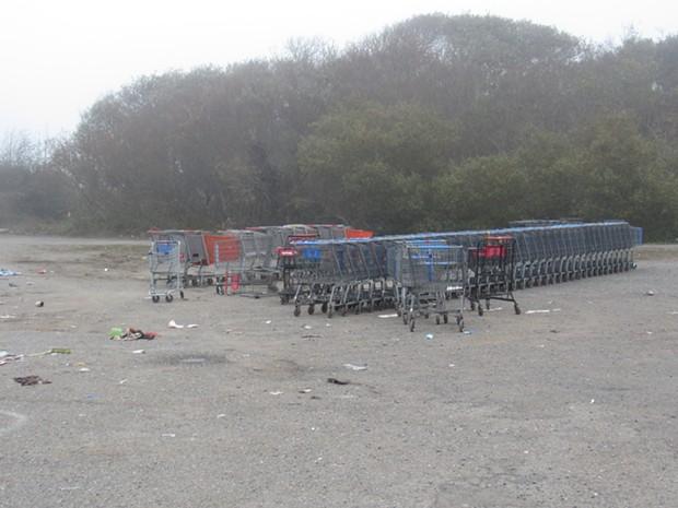 Shopping carts hauled away on Thursday. - LINDA STANSBERRY