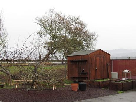 The back garden area. - LINDA STANSBERRY