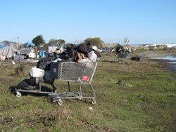 An abandoned shopping cart in the PalCo Marsh. - FILE