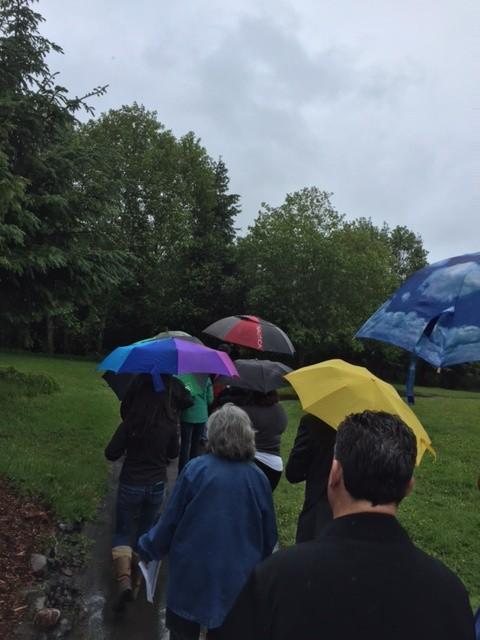 A rainy walk through the restored riparian area. - GRANT SCOTT-GOFORTH