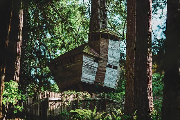 """""""Tree house,"""" 6:40 p.m. - LEÓN VILLAGÓMEZ"""