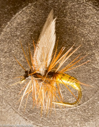 A fishing lure designed to emulate a mayfly. - ANTHONY WESTKAMPER