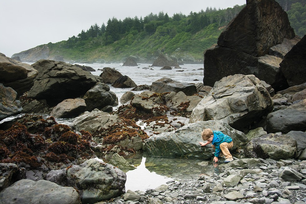 Tide pools at Patrick's Point. - TURNER FORTE PHOTOGRAPHY
