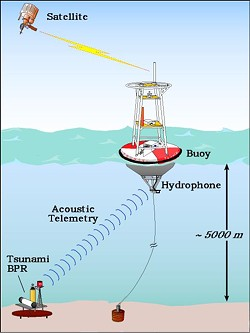 A graphic showing the buoy system that tracks tsunamis. - NOAA
