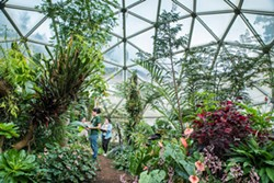 An indoor Eden at HSU. - COURTESY OF HUMBOLDT STATE UNIVERSITY