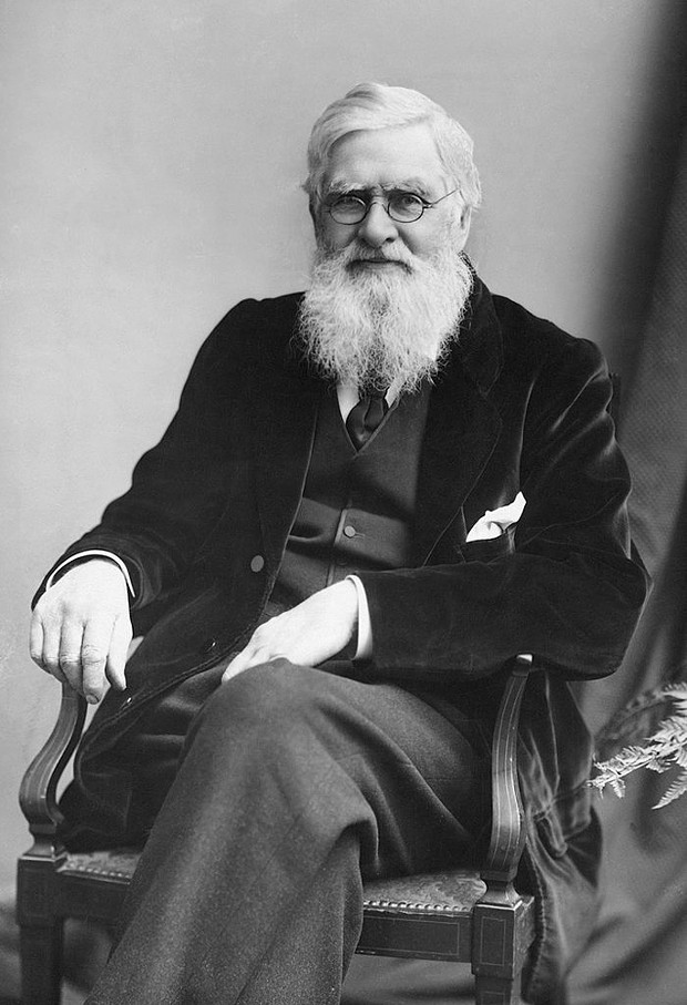"""Decent to a fault"" (per historian Charles Smith), Alfred Russel Wallace (1823-1913) was a scientist, social justice activist and polymath."