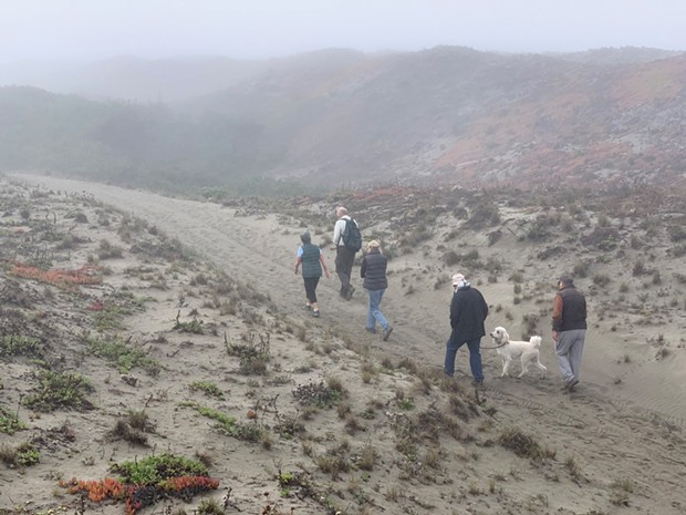 Walking along the Humboldt Bay Municipal Water District's waterline right-of-way in the 357-acre Samoa Dunes and Wetlands Conservation Area.