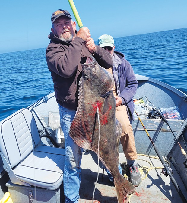 Frank Spallino, of McKinleyville, landed this 46-pound Pacific halibut recently while fishing out of Trinidad.