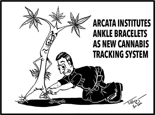 Cannabis Tracking?