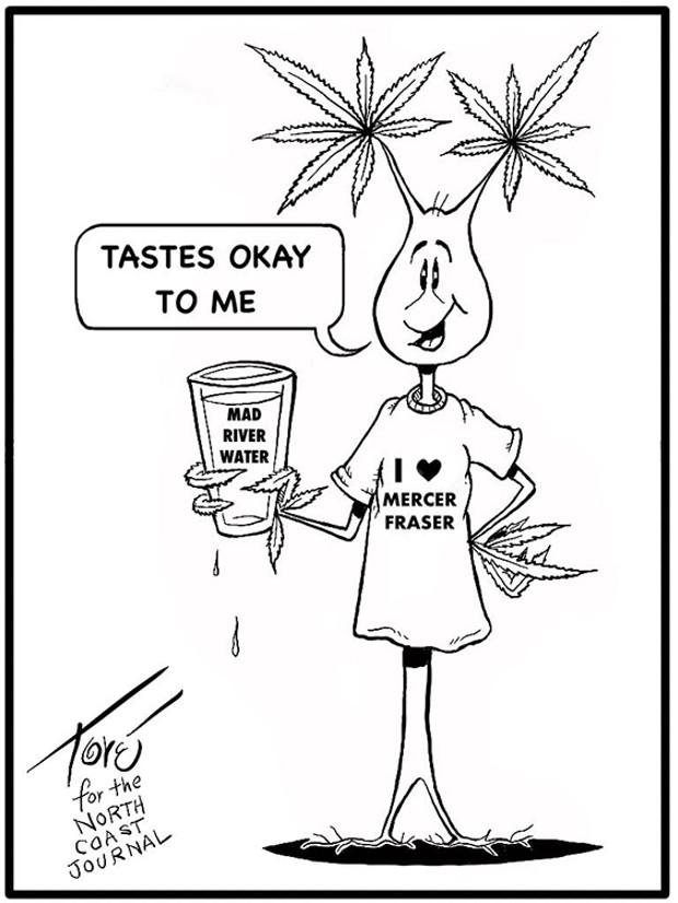 Tastes Okay to Me