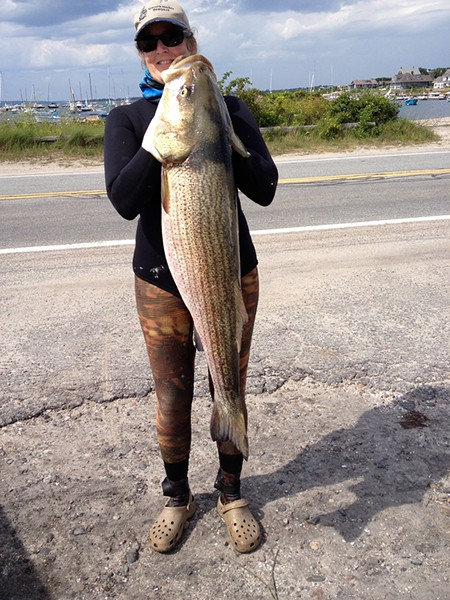 Easter's partner Anne Doherty with a striped bass she speared. - COURTESY OF ANNE DOHERTY