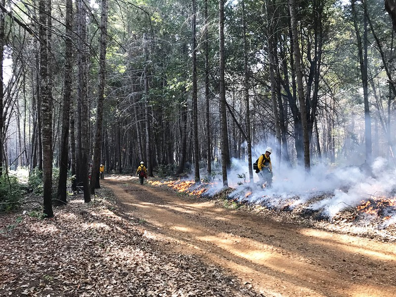A recent controlled burn near Orleans. - PHOTO BY LAURIE WIGHAM.