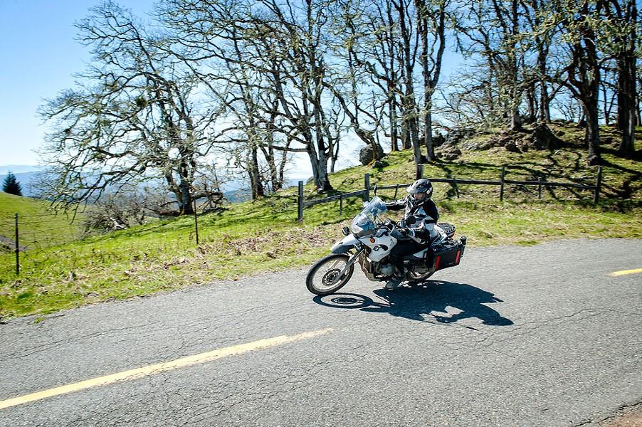 Out to pasture in Kneeland. - MARK MCKENNA