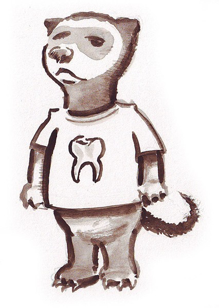 The Tooth Ferret. - JOEL MIELKE