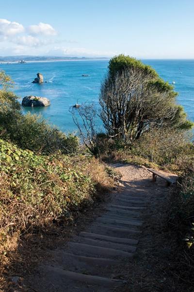 Steps to Old Home Beach. - MARK MCKENNA