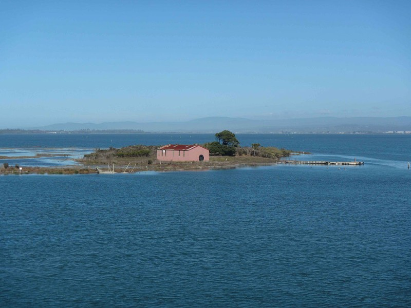 A view of Indian Island's Tuluwat site during a king tide. - THOMAS DUNKLIN