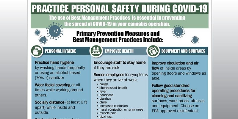 Updated information on how to practice personal safety in preventing the spread of COVID for cannabis operations.
