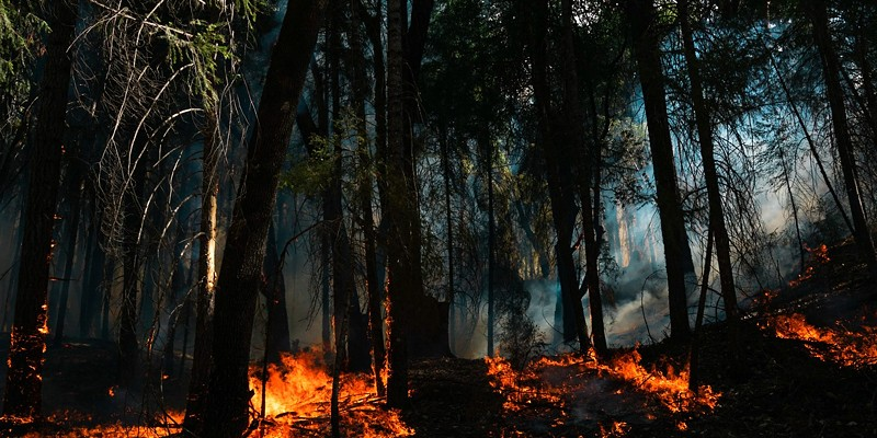 Photo by Robert Leblanc/National Interagency Fire Center.