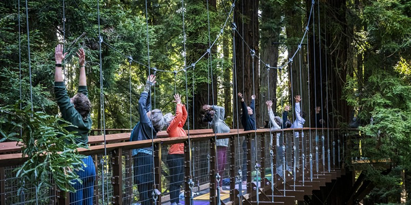 Three yoga instructors from the Pali Yoga Studio interspersed themselves among participants on the suspended walkways and tree platforms of the Redwood Sky Walk.