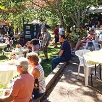 Fieldbrook Art and Wine Festival