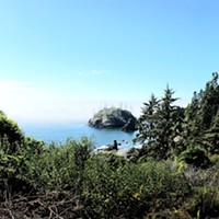 The restored trail to Trinidad State Beach emerges from the shade and slopes downhill, a perfect platform from which to take in the awesome California Coastal National Monument.