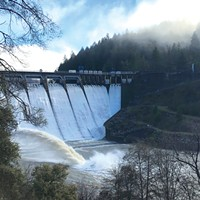 Constructed in 1920 as a part of the Potter Valley hydroelectric project, Scott Dam blocks 100 miles of steelhead and salmon spawning habitat on the Eel River.