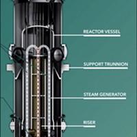NuScale 65-foot-long, 9-foot-diameter modular reactor.