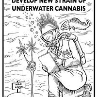 Mercer-Fraser scientists develop new strain of underwater cannabis.