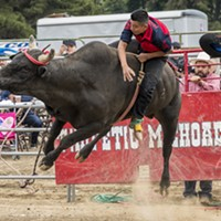 A bull rider fights to hold on at Redwood Acres Fairgrounds.