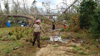 Fortuna Corpsmember Kali Madding hauls off a removed tree limb as her crew works to clear a resident's driveway. - CCC