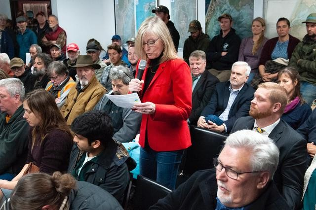 Fourth District Supervisor Virginia Bass speaks at the crowded hearing. - MARK MCKENNA