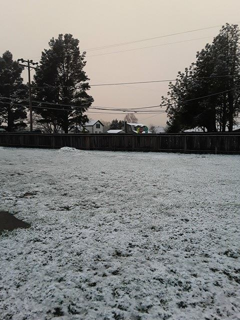 Hydesville saw about an inch of snow. - LAURIE NEWMAN