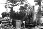 Steam donkey near Bear River and Mattole River area, Photo courtesy of HSU Humboldt Room Special Collection