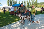 Darelle and Janice Story walk Dozer and Jax past the beer booth at the Highland Games in Blue Lake.