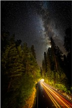 Late night cars paint their strokes of light onto the dark canvas along a redwood corridor on US 101, the Redwood Highway. Photographed from the Avenue of the Giants, Humboldt County, California.