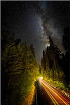 Late night cars paint their strokes of light onto the night's dark canvas along a corridor of towering redwoods on US 101, the Redwood Highway. Photographed from the Avenue of the Giants, Humboldt County, California. August, 2019.