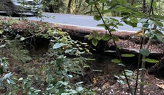 Briceland Road to Close Saturday for Repair Prep