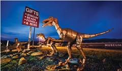 Raptors at Chapman'sGem and Mineral