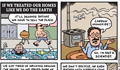 If we our Homes like we do the Earth