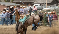 Hold onto Your Hats, Rodeo's Back!